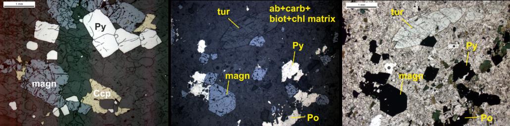 Type 1 Vein petrography