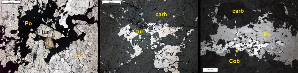 Type 2 Vein petrography